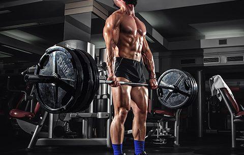 Aumentare massa Calisthenics e sollevamento pesi dorso e bicipiti